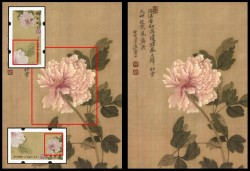 Chinese Peony Images